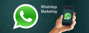 whatsapp marketing company in jaipur|whatsapp marketing in jaipur|whatsapp marketing company in rajasthan|bulk whatsapp service provider|whatsapp marketing company in jaipur|whatsapp marketing in jaipur|whatsapp marketing company in rajasthan|bulk whatsapp service provider|whatsapp marketing company delhi|whatsapp marketing in delhi|whatsapp marketing company delhi|bulk whatsapp service provider delhi||whatsapp marketing company in noida|whatsapp marketing in noida|whatsapp marketing company in noida|bulk whatsapp service provider noida|whatsapp marketing company gurgaon|whatsapp marketing in gurgaon|whatsapp marketing company gurgaon|bulk whatsapp service provider delhi|whatsapp marketing company delhi|whatsapp marketing in delhi|whatsapp marketing company delhi|bulk whatsapp service provider delhi||bulk whatsapp service provider chandigarh|whatsapp marketing company chandigarh|whatsapp marketing in chandigarh|whatsapp marketing company chandigarh|bulk whatsapp service provider chandigarh |whatsapp marketing in bangalore|whatsapp marketing company in bangalore|bulk whatsapp service provider bangalore|whatsapp marketing companies in chennai|whatsapp marketing company in chennai|whatsapp marketing in chennai|bulk whatsapp service provider chennai|web development company in chandigarh|web development company in bangalore|web development company in chennai|seo company in chandigarh|seo company in bangalore|seo company in chennai|whatsapp marketing software|whatsapp marketing software provider