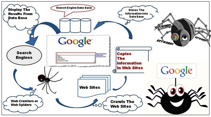 Search Engine Spider robotes bots seo company in jaipur seo company in delhi seo company in gurgaon seo company in india seo company