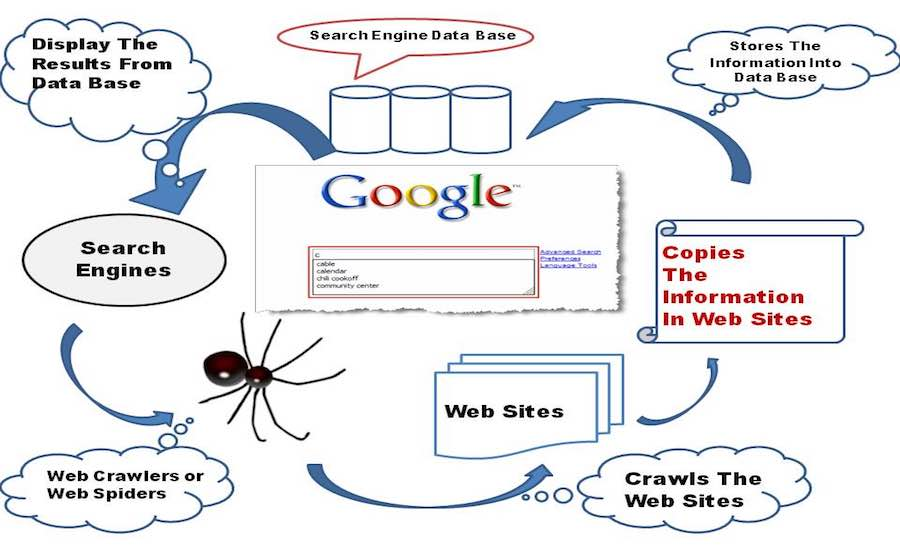 search engine working seo company in jaipur seo company in delhi seo company in gurgaon seo company in india seo company